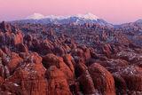 Desert Meets Alpine print