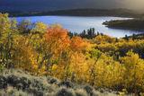 Twin Lakes Blaze print