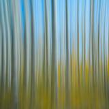 Autumns Abstract print