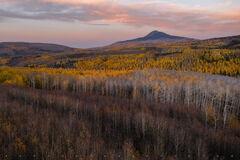 Rustic Colorado