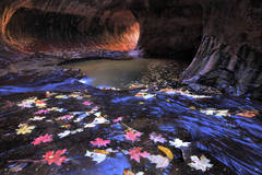 subway, zion national park, autumn