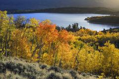 Twin Lakes Blaze