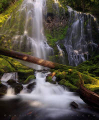 Proxy falls photos, proxy falls oregon photos, waterfall photography, oregon waterfalls, waterfall prints,