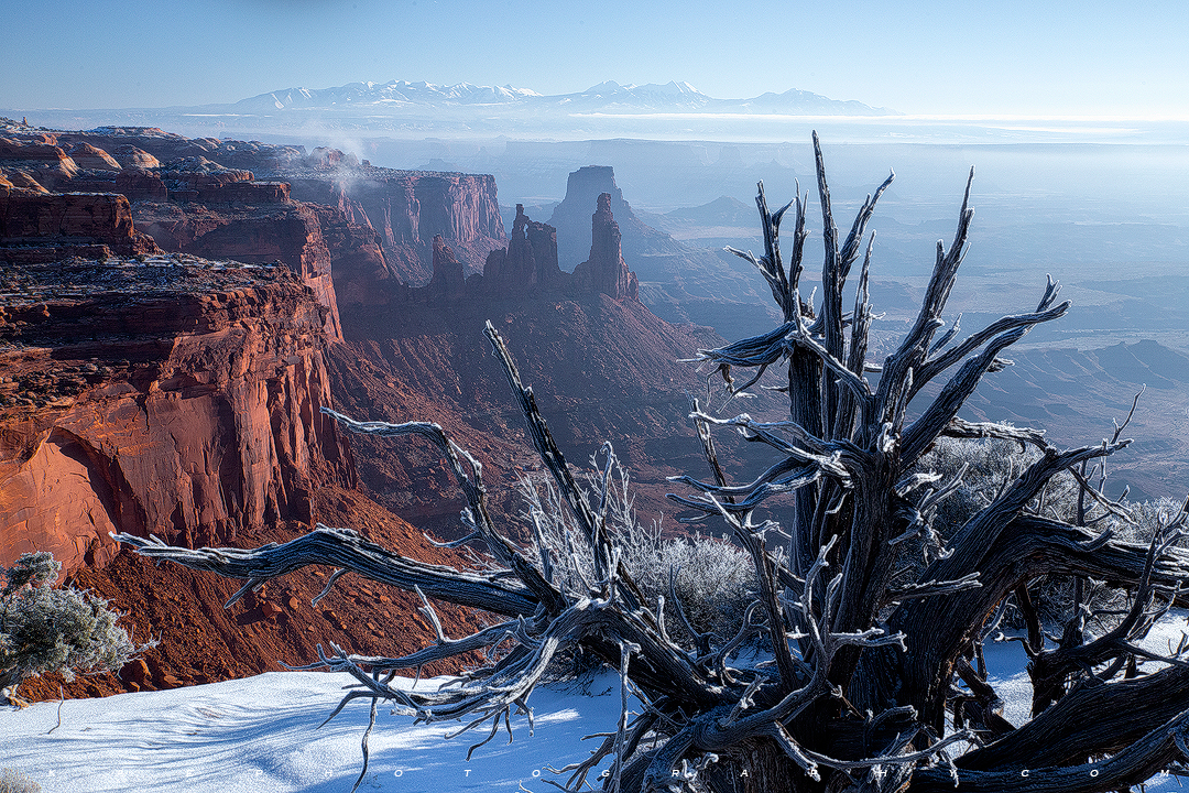 Iced Canyonlands