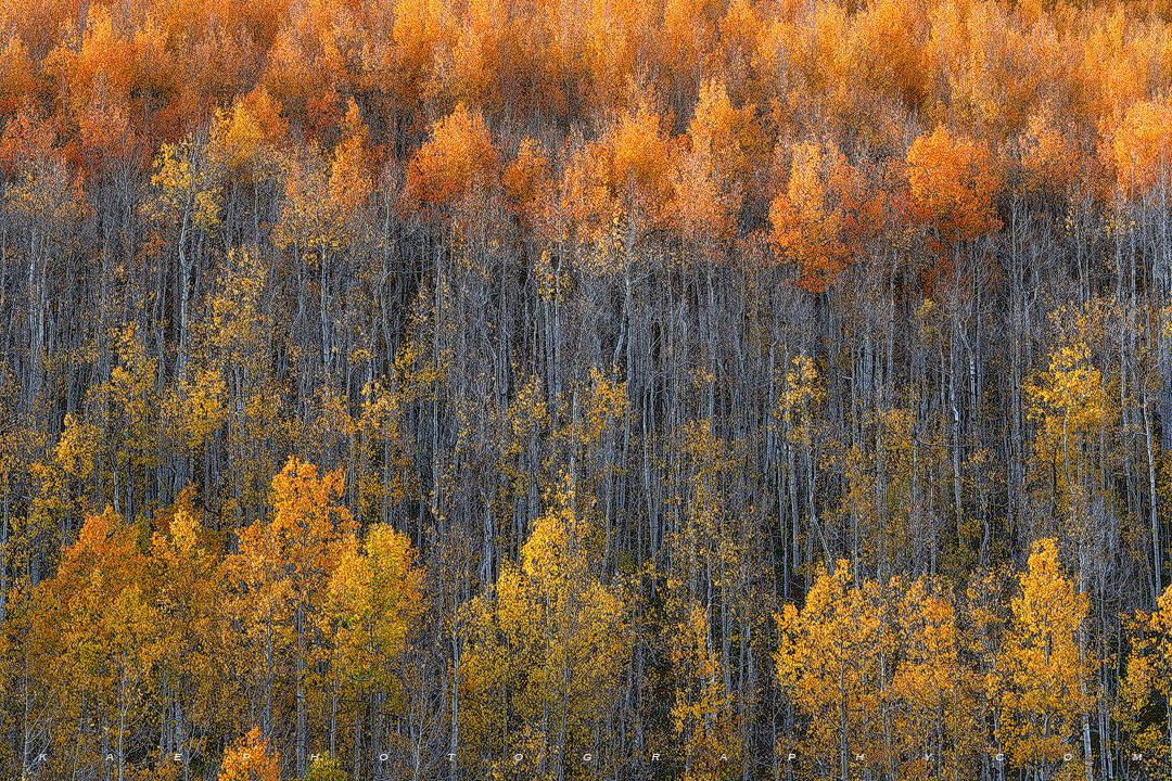 Ironton, Colorado, photo