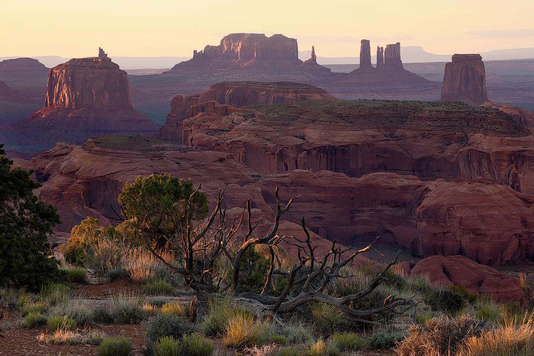 Desert Details