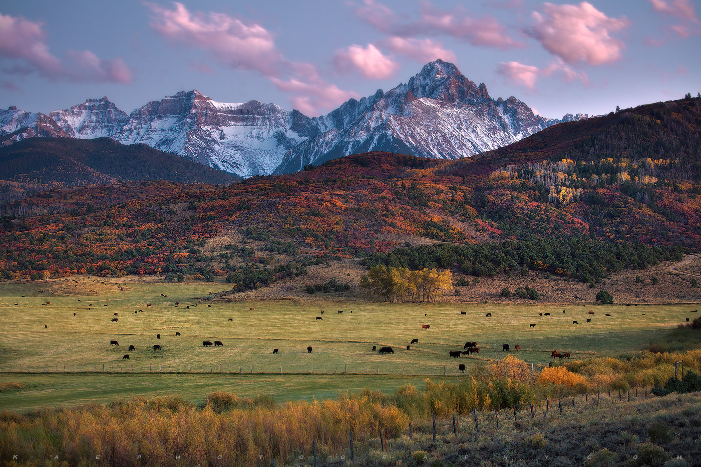 A classic Colorado Ranch scene, with hay bales, fall colors and pink clouds.  Mount Sneffels & the Dallas Divide towers above...