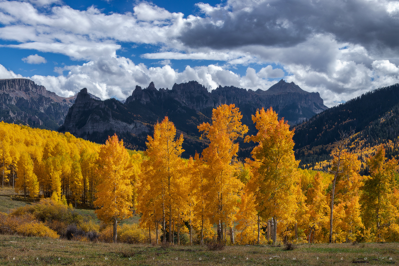 Vibrant aspen trees, frame Pinnacle Ridge as clouds from a building storm fill in the blue sky.  Owl Creek's fall colors are...
