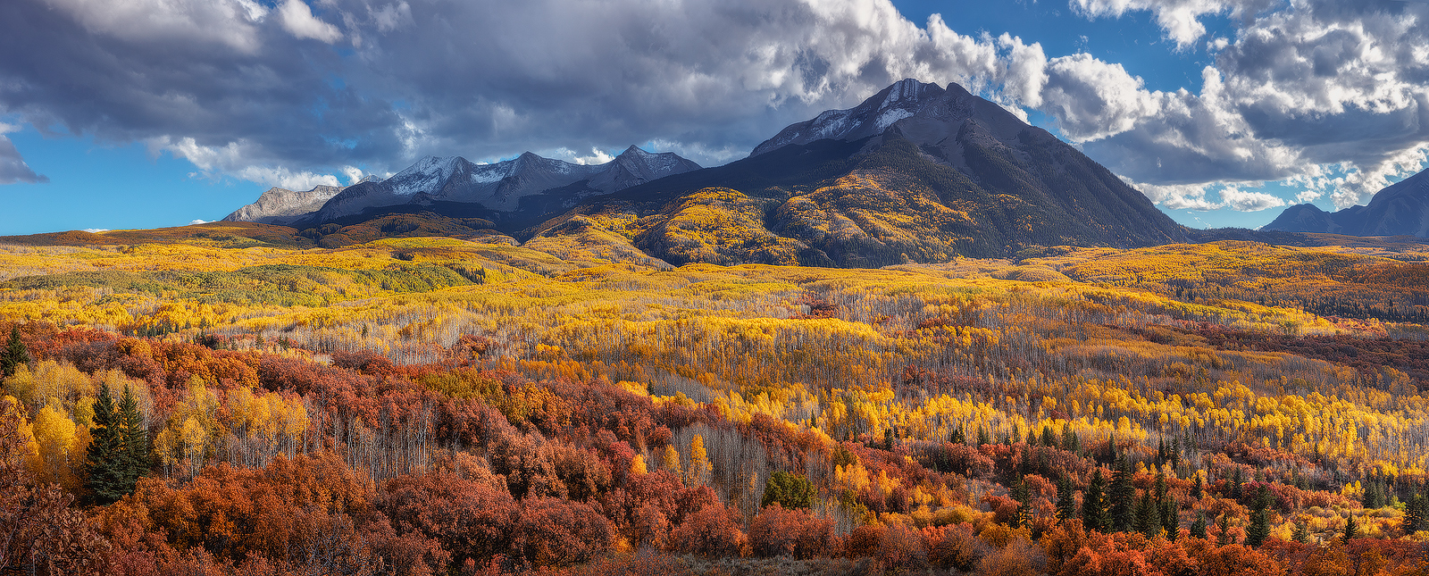 What appears to be a millions miles of aspen trees encompasses the beautiful West Beckwith mountain.